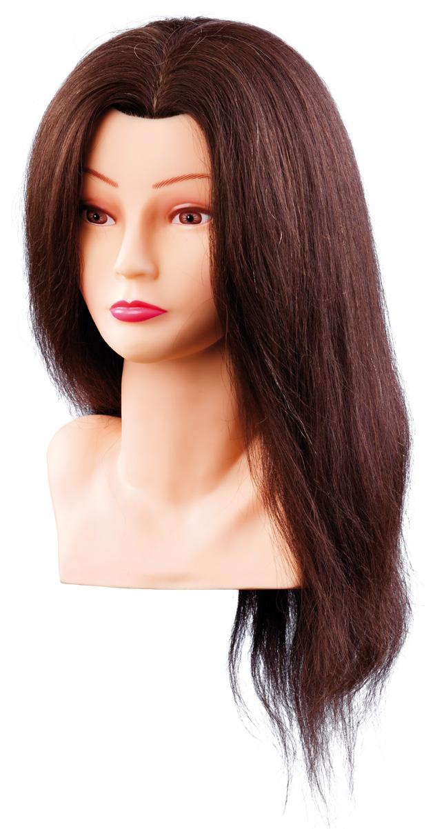 Cvičná hlava ELLEN 7000798 , 100%, ľudské vlasy, hnedý odtieň, 40 cm