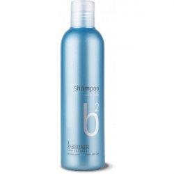 Broaer b2 silver color - šampón na šedivé a melírované vlasy 250 ml