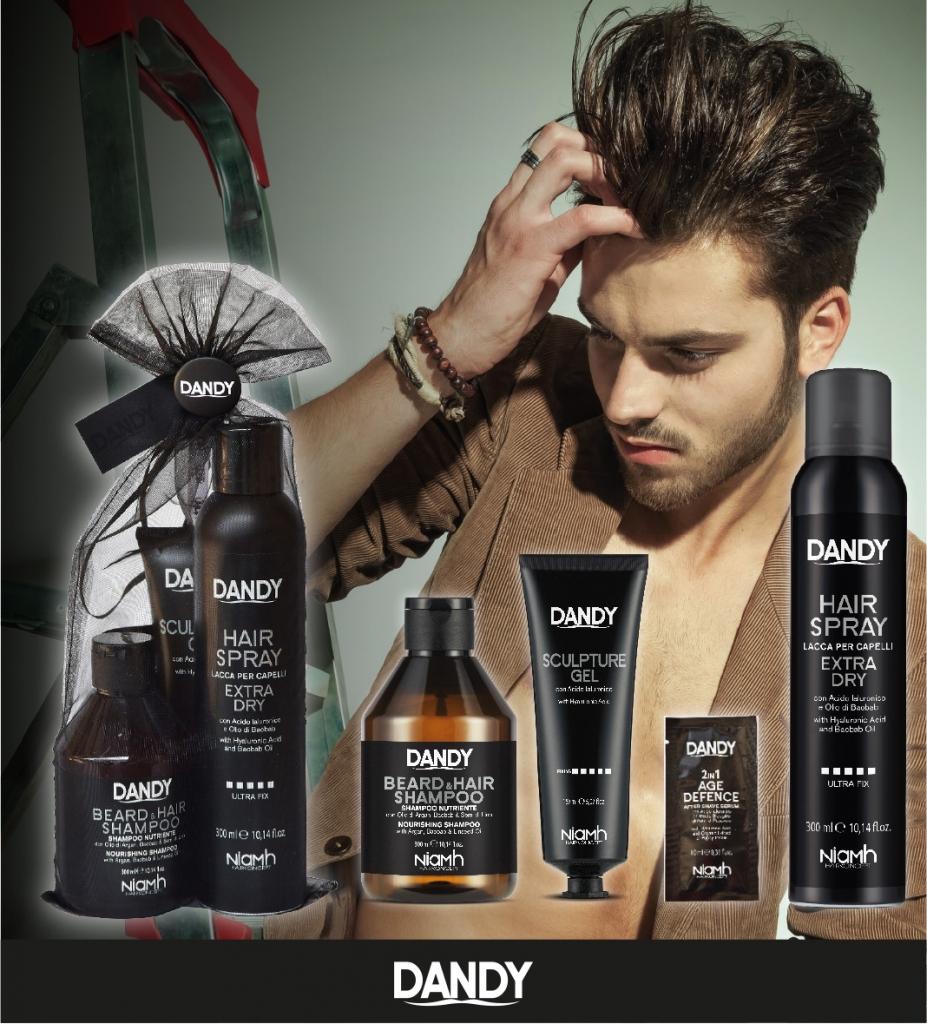DANDY Gift Bag Styling - šampon, 300 ml + černý gel 150 ml + silný lak na vlasy, 300 ml + vzorek, 10 ml